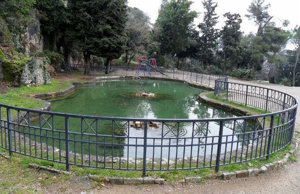 Prirodoslovni Muzej Zeli Napraviti Botanicki Vrt U Rijeci Fiuman Hr